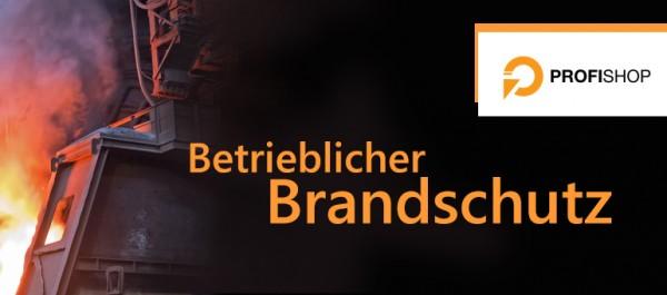 Betrieblicher-Brandschutz598c14dce9a86